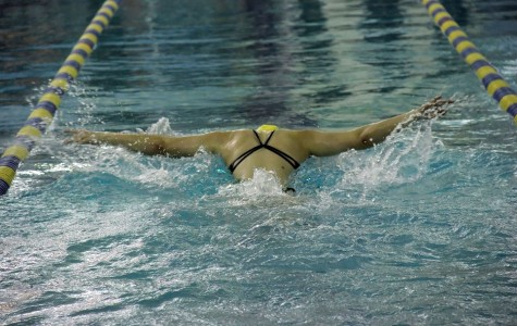 Swimming Spreads Wings to Success