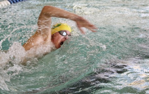 Boys swimming finds camaraderie at State