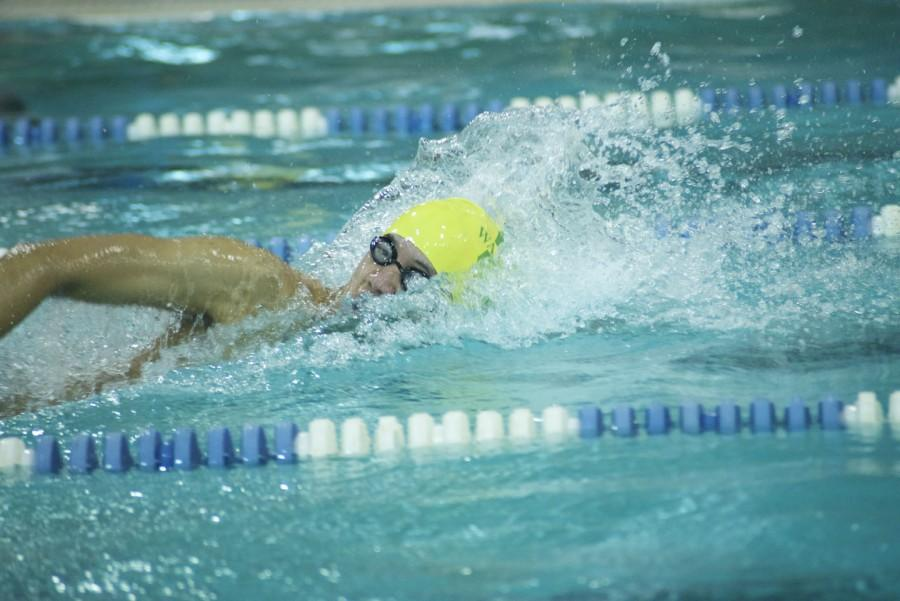 District  swimmers are sure to make a big splash