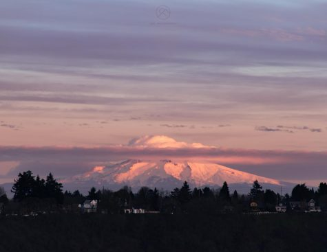 Photo Essay: Winter at Mt. Hood and in Portland